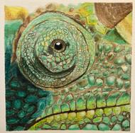 Scaley Chameleon Eye