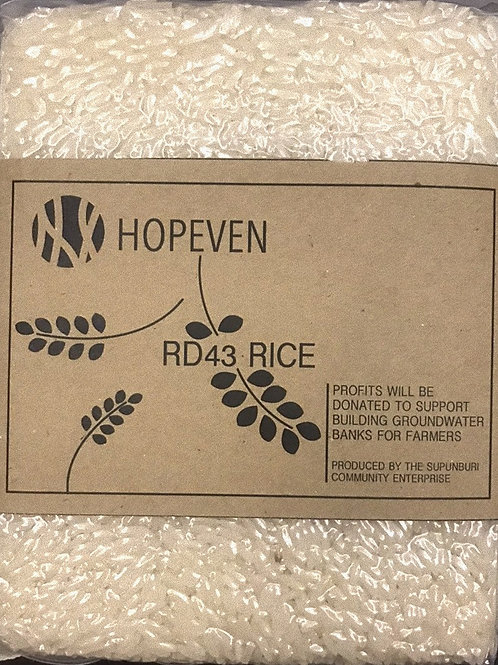 RD43 Rice