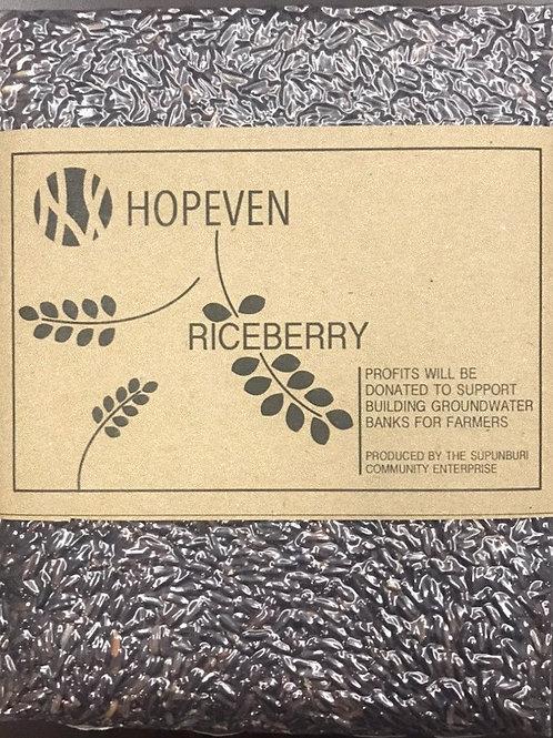 Riceberry Rice