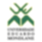 partner-institutes-estuarize-_wio-uem-un