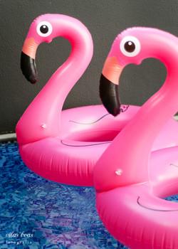 Boias Gigantes Flamingos