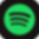 spotify-icon-2.png