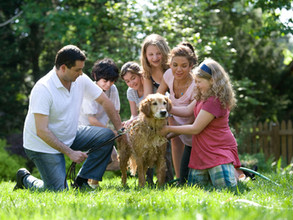 How Can I Get My Family To Participate In And Benefit From Family Counseling?