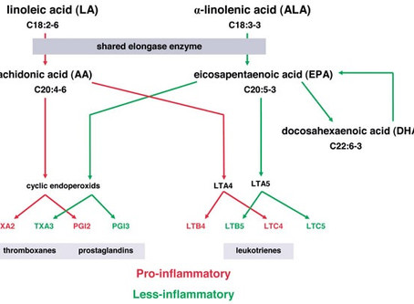 L'aumentato rapporto degli acidi grassi n-6/n-3 nei pazienti con Psoriasi