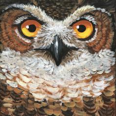 Great Horned Owl Front.jpg