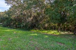 Garden - Forest Preserve