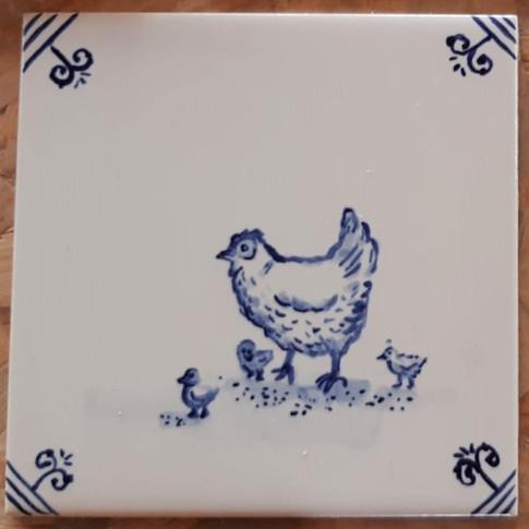 תרנגולת דלפט