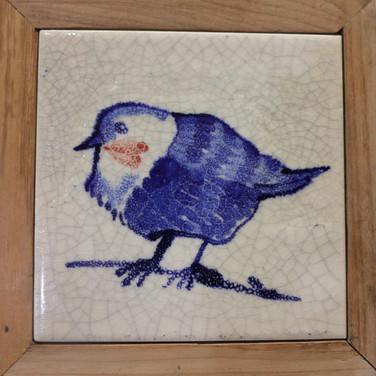 ציפור קרקל