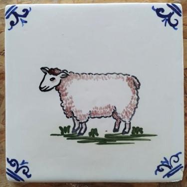 כבשה צבעונית