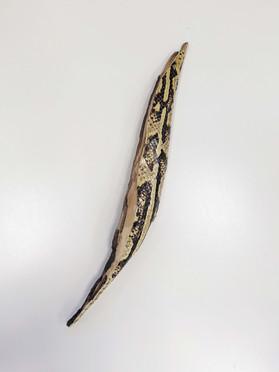 serpens 8'.jpg