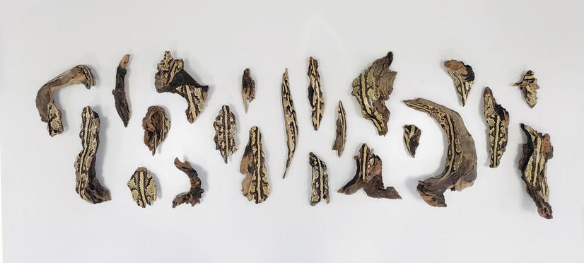 serpens 6.jpg