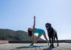 Copy of house deck yoga.jpg