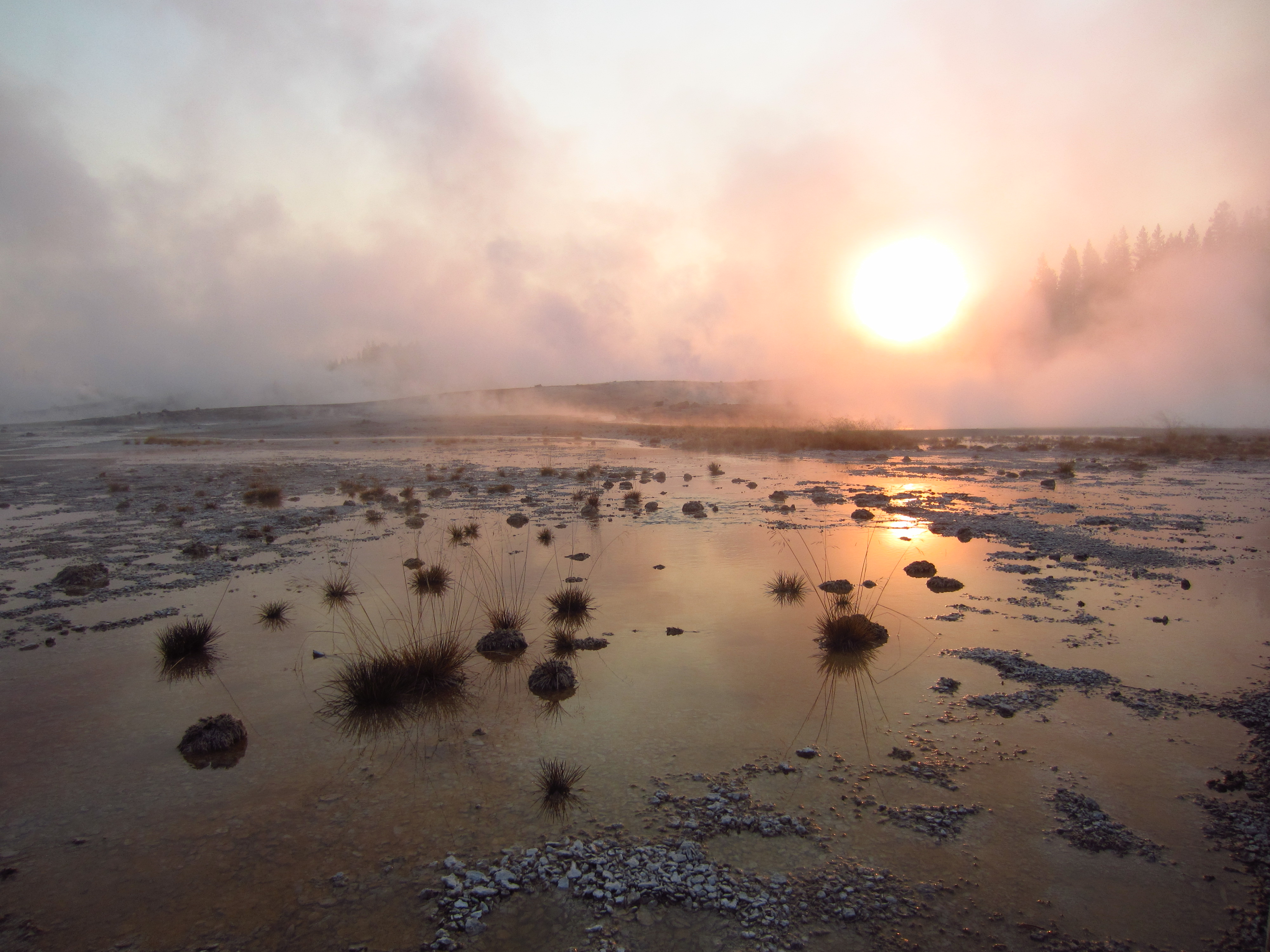 norris geyser basin, wyoming