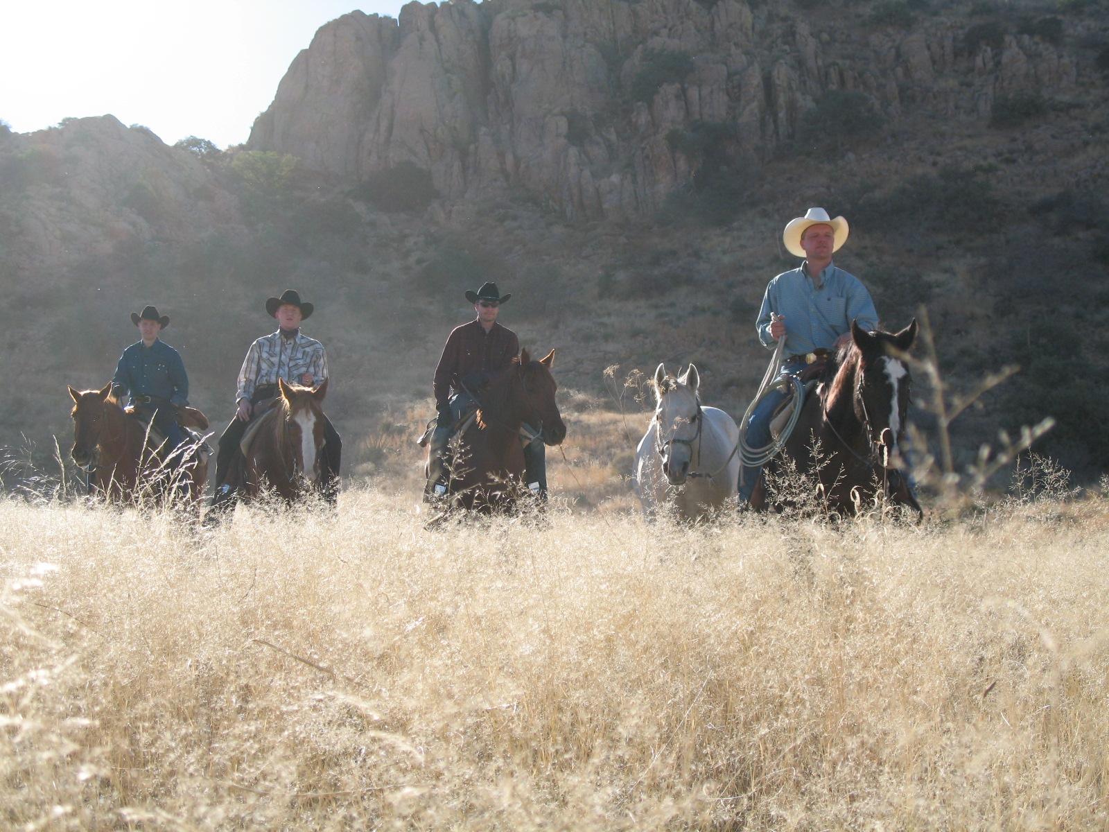 cowboys, arizona
