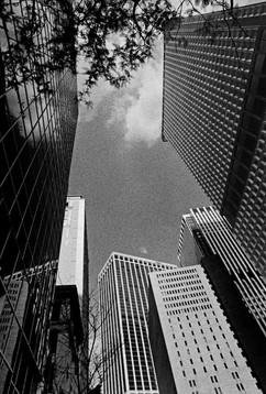 88099_New_York_web.jpg