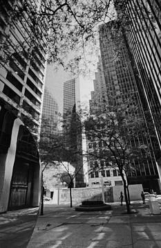 88098_New_York_web.jpg
