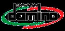 Domino Comandi Moto