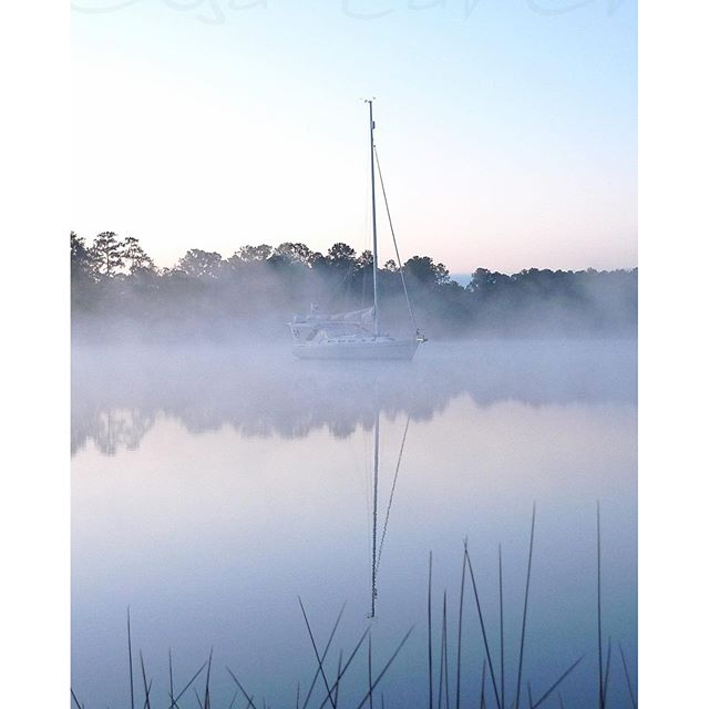 Creek in early morning mist #innerbanks #outerbanks #onc #sailingcapitalofnc #sailing #sailinglife #