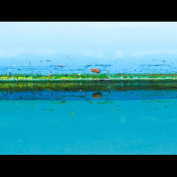 Paint by Nature #paint #blue #blu #bleu #turquoise #turchese #yellow #jaune #giallo #contemporaryart