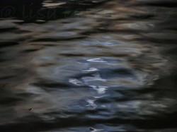 MOON-REFLECTION VINTAGE MARINA w wtrmk (1 of 1)