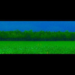 LAND #landlegs #straightroad #onc #blueandgreen #wallartprint #contemporaryart #abstractart #farmart