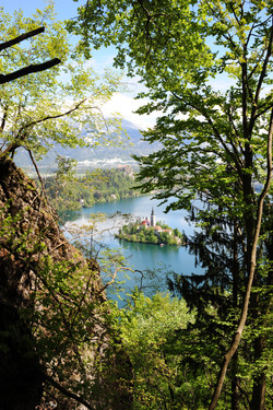 View over Lake Bled during the Osojnica hike