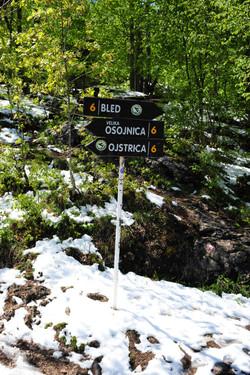 Osojnica hiking trail