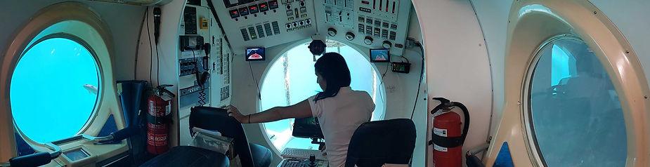 Unusual things to do in Tenerife - Submarine Safari