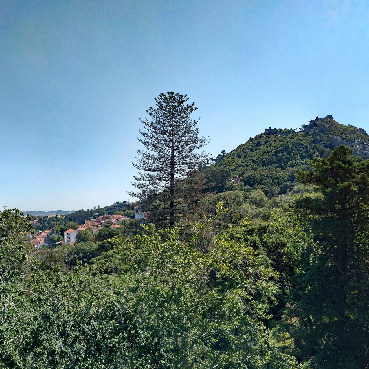 View from Quinta da Regaleira grounds