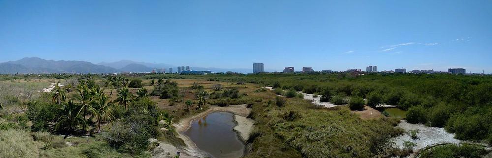 Panorama of Estero el Salado