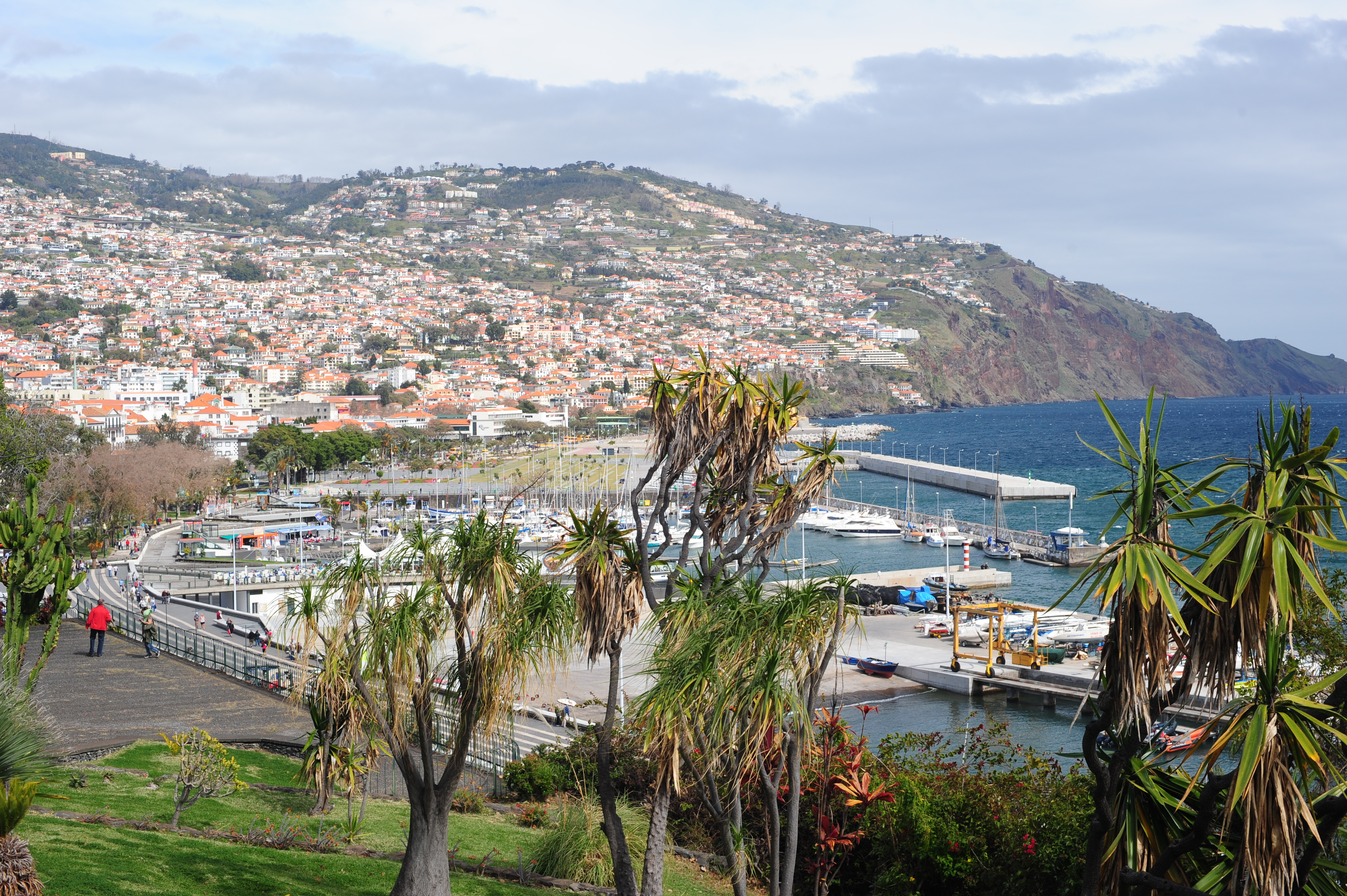 View towards Funchal centre