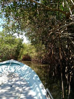 On the boat in Estero el Salado, Puerto Vallarta