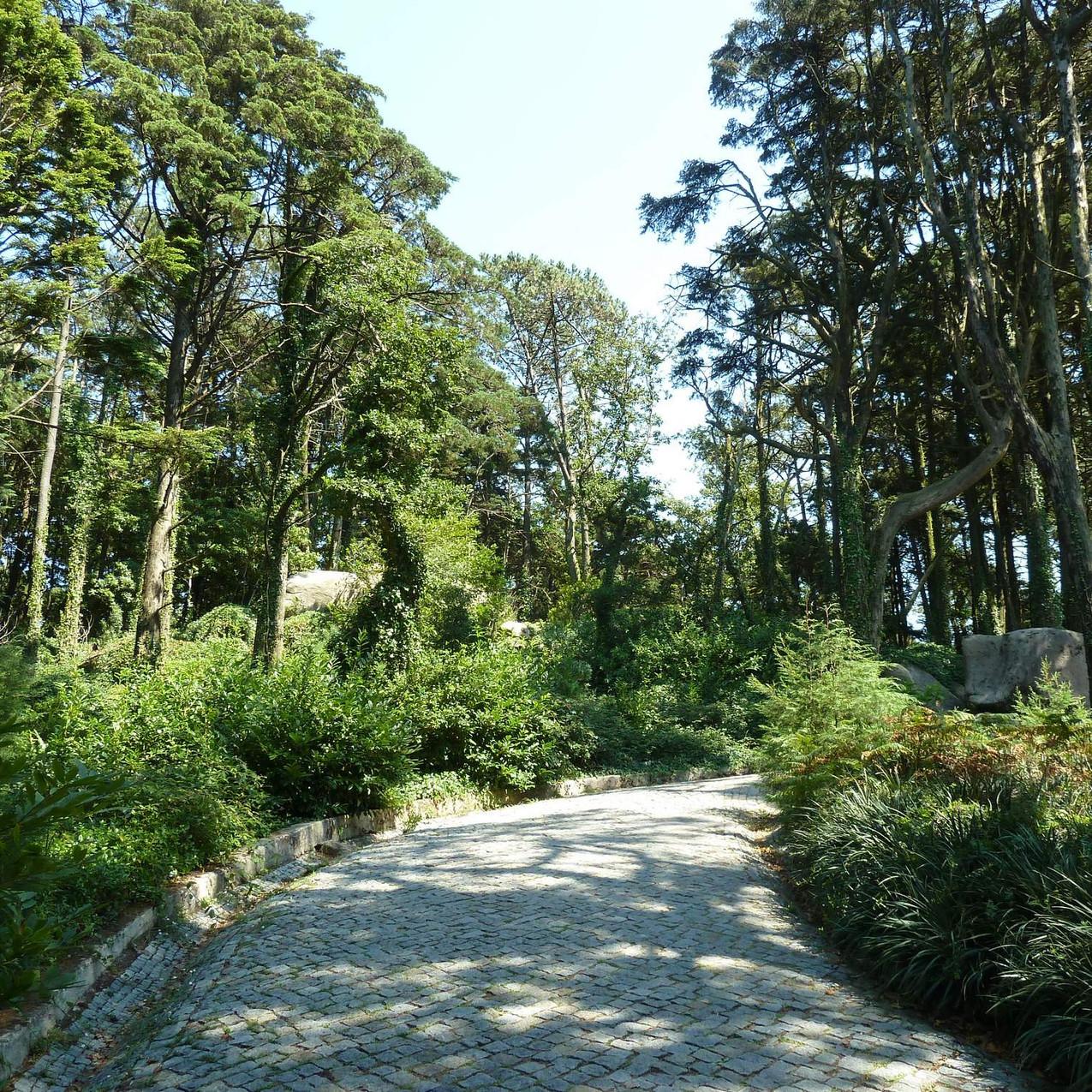 Pena Palace grounds