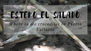 Where to See Crocodiles in Puerto Vallarta - Estero el Salado