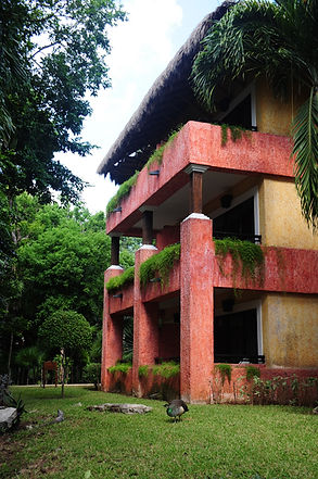Iberostar Quetzal block of rooms