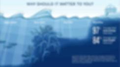 1 Monitoring Sites Program_ Beyond Coral