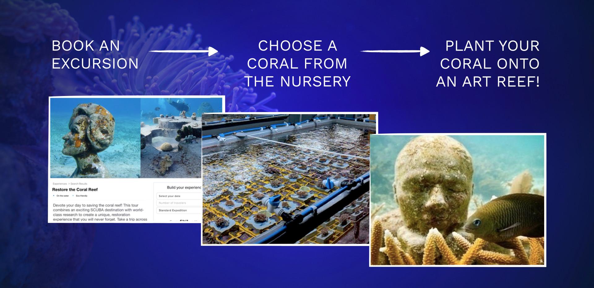 Beyond Coral for Website.001.jpeg