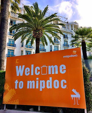 MIPDOC2014.jpg