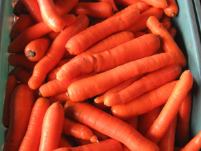 Are You Carrot Secure?