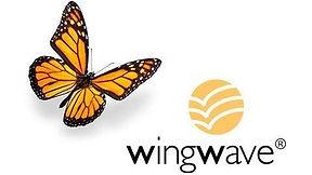 wingwave coaching.jpg