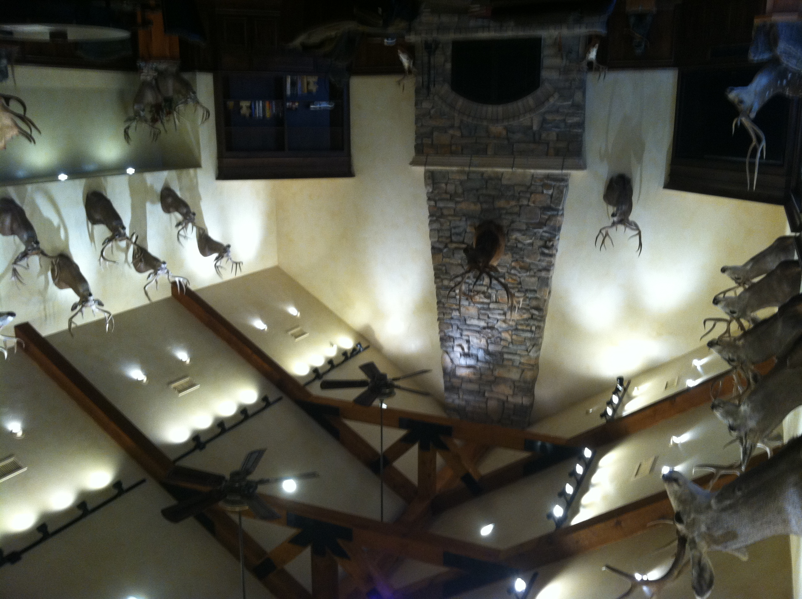 Trophy Room Lights