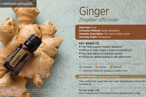 Ginger 15 mL