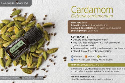 Cardamom 5 mL
