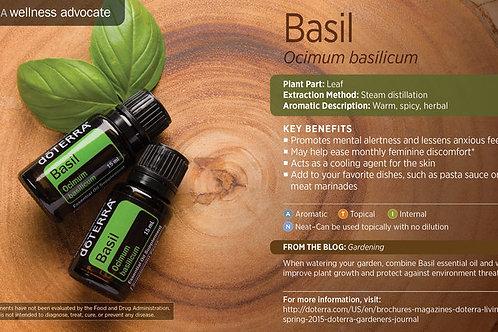 Basil 15 mL