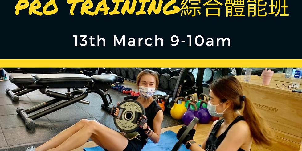 Pro Training綜合體能班