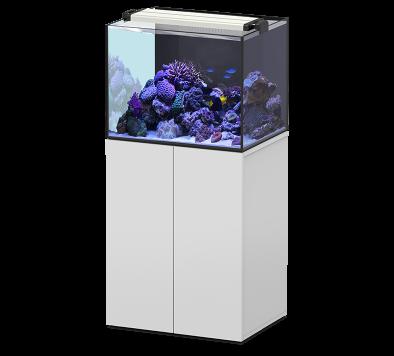 Aquaview 65 met meubel