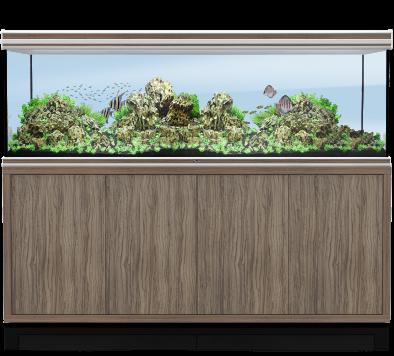 Fusion 200 / 70 Aquarium