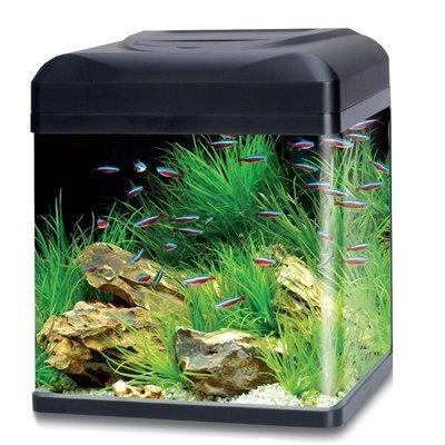 Aquarium LA 50 Led