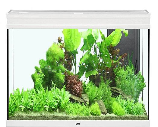 ELEGANCE EXPERT 120 Aquarium