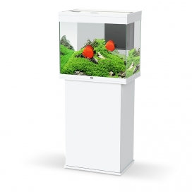 Emotions Nature Pro 60 Aquarium & kast